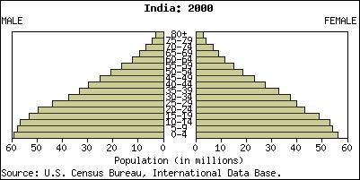 comment construire pyramide des âges